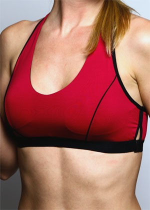 Burgundy/Black Mountain View Sports Bra Front